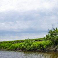 река Тартас :: Вера Кочергина