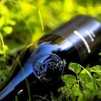 бутылка в траве 2 :: igor volgin