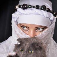 CATS :: Julia Miloserdova