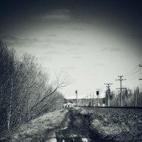 Дорога к полустанку :: Павел Игнатов