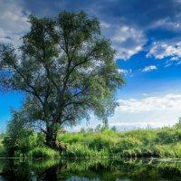 Пейзаж :: Максим Криштоп