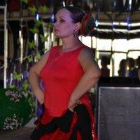 Фламенко - любовь моя :: Лилия П.
