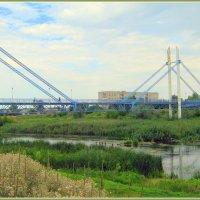 Пешеходный мост через Северский Донец.Харьковская обл. :: Валентина ツ ღ✿ღ