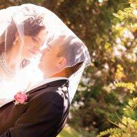 Свадьба Марии и Никролая :: Татьяна Пожидаева