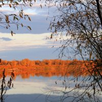 Осенняя картина :: Алла ZALLA