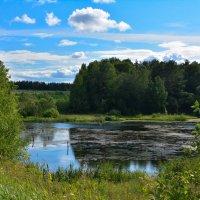 Тихое озеро :: Антон Гордин