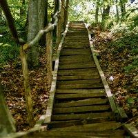 Старая лестница :: Андрей Печерский