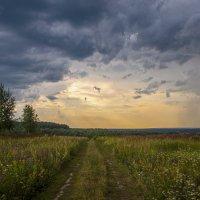 Конец июля :: Василий Либко