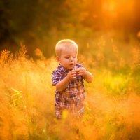 Детство в золоте :: Янина Гришкова