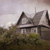 Дом в деревне :: Наталья Косарева