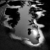 Пьющий солнце :: Иван Губин