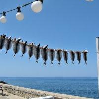 Крит. Набережная :: Марина Бушуева
