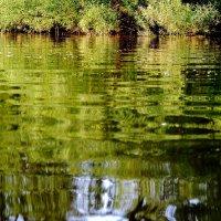 Чудесный вечер на таежной речке :: Нина северянка