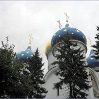 Главы Успенского собора в Троице-Сергиевой Лавре. :: Елена