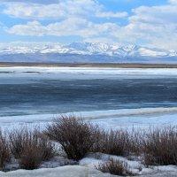замерзшее озеро в Чуйской степи :: Галина Шепелева