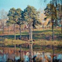 На озере :: Анатолий Красовский