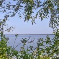 Окно в лето :: lady v.ekaterina