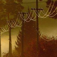 Электричество :: Mike214