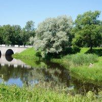 Большой Каменный мост, Мариентальский пруд, лестница со львами :: Елена Павлова (Смолова)