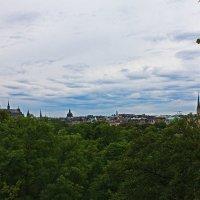 Стокгольм с вершины Скансен. :: Александр Лейкум