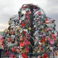 Замки любви на Лужковом мосту. :: Елена