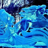 Лети, конь ледяной !!! :: Milocs Морозова Людмила