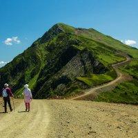 Кавказские горы. :: Галина Кучерина