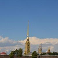 Колокольня Петропавловского собора :: Алёна Мартынцова