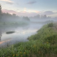 Туман крадется над рекой :: Александр Бархатов