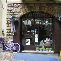 Сиреневый велосипед :: Лина Пушок