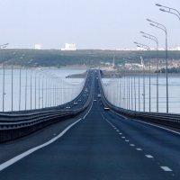 На Президентском мосту :: Елена Шемякина