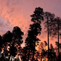 Рассвет, похожий на закат. :: Валерия  Полещикова
