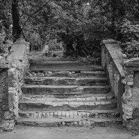 ...вверх по лестнице, ведущей вниз... :: Владимир Голиков