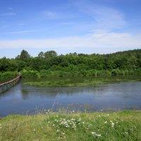 Через речку был мосток . :: Мила Бовкун