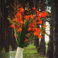Flowers :: Виктория Иванова