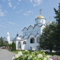 Покровский собор Суздаль :: Николай