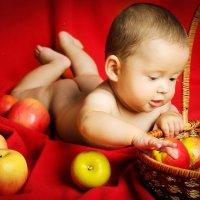 Малыш :: Oksanka Kraft