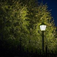 Ночь :: Василий Либко