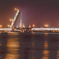 Литейный мост и Петропавловка (вариант) :: Владимир Демчишин