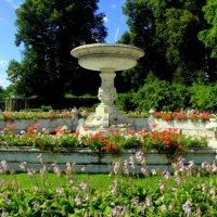 В парке :: Ирина Фирсова