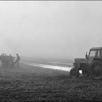 Зима на носу :: Александр Яковлев