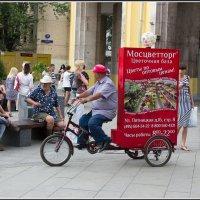 Моя Москва. Велосипедное :: Михаил Розенберг