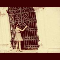 Дверь в Коломну :: Елена S