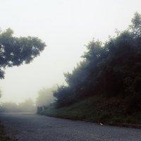 Туман :: Remian Mad