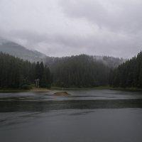 Озеро Синевир :: Дмитрий Гончаренко