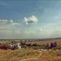 Ока в окрестностях Перемышля :: Дмитрий Анцыферов