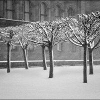 А снег идет... :: Александр Яковлев