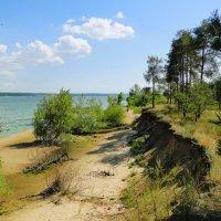 Пальцинский остров :: Елена Шемякина