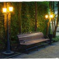Вечер в саду :: Александр Ч
