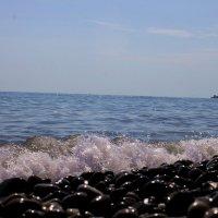 Черноморье :: Наталья Трифонова